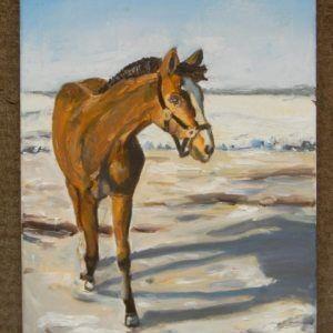 """Glezna """"Zirgs ziemas saulē"""""""